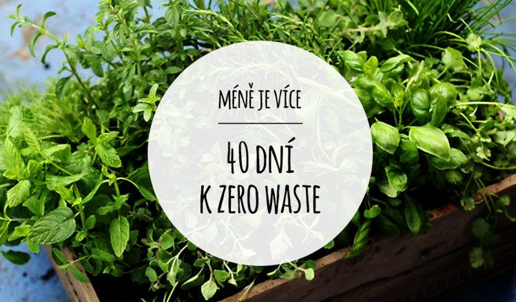 40 dní k zero waste